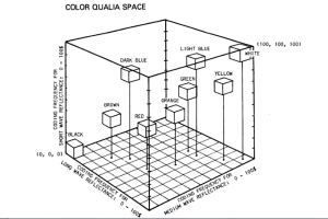 color qualia