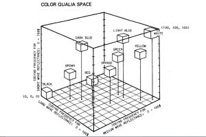 color qualia