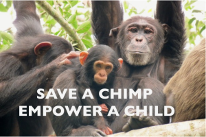 save a chimp empower a child