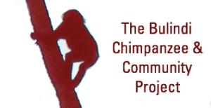 20141026043428-Chimp__2_